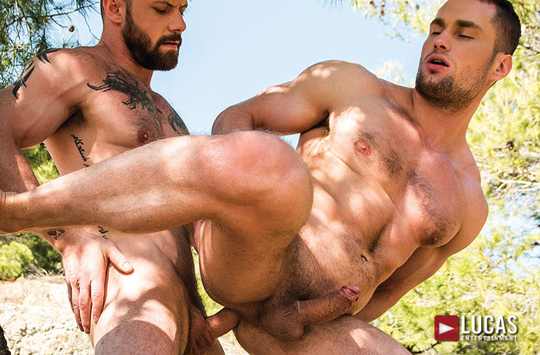 Great gay porn site paid with bareback movies