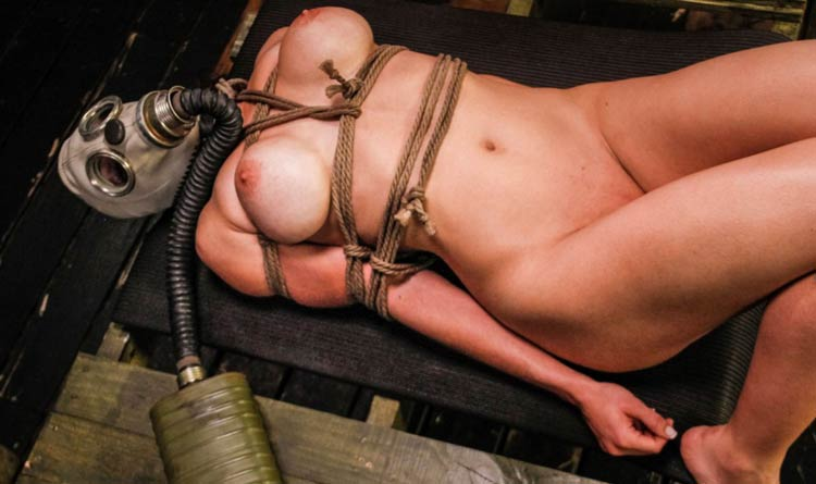 Greatest pay xxx site if you love hardcore bondage porn